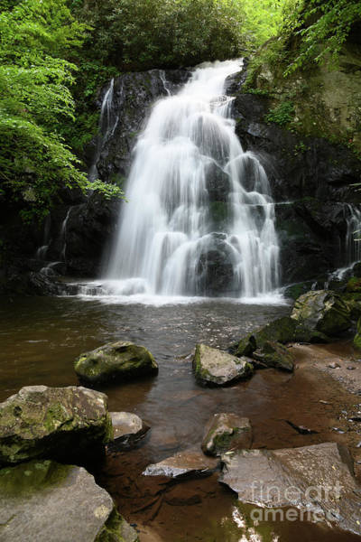Photograph - Picturesque Waterfall by Phil Perkins