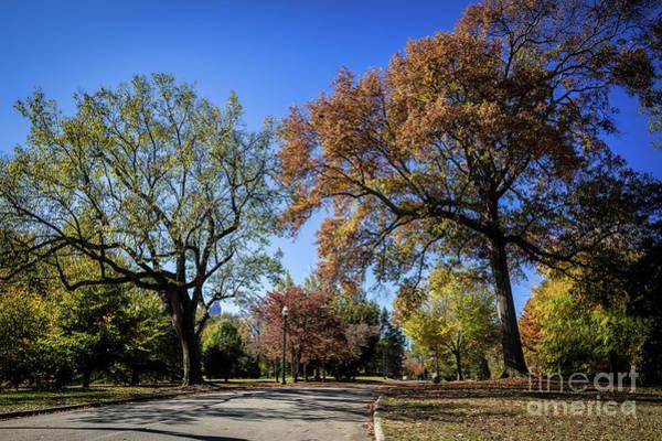 Photograph - Piedmont Park Atlanta Ga 1 by Sanjeev Singhal