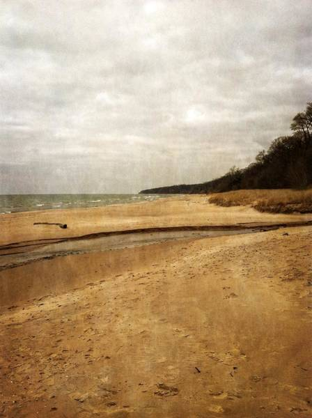 Photograph - Pier Cove Beach With Driftwood by Michelle Calkins