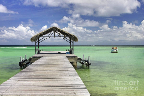 Wall Art - Photograph - Pigeon Point Tobago by John Edwards