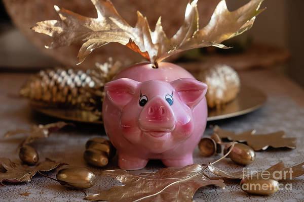 Photograph - Piggy Bank On The Golden Background by Marina Usmanskaya