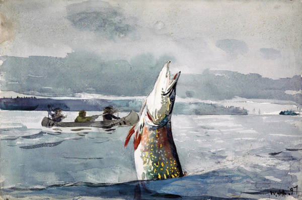 Wall Art - Painting - Pike, Lake St. John - Digital Remastered Edition by Winslow Homer
