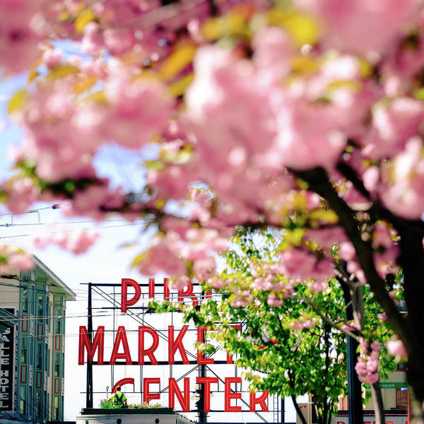 Photograph - Pike Place Market In Seattle by Nicole Young