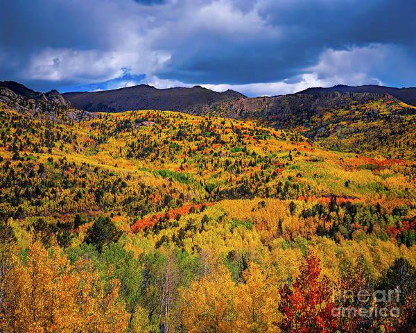 Pikes Peak Autumn Art Print