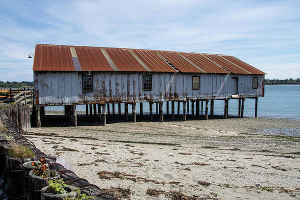 Photograph - Pilings And Rusty Roof by Tom Cochran