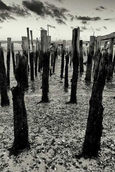 Photograph - Pilings by Frank Winters