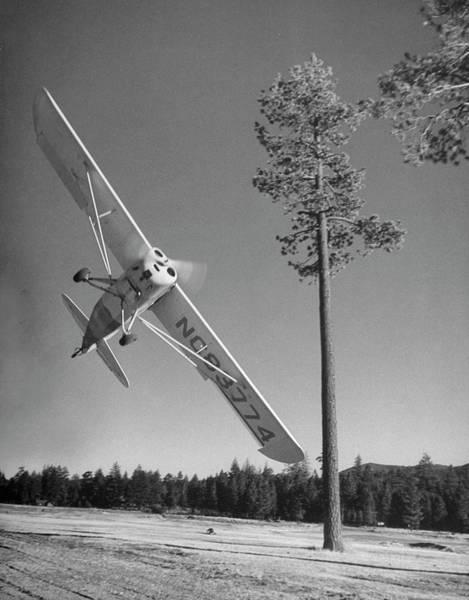 Aerobatics Wall Art - Photograph - Pilot Sammy Mason Flying Around A Tree by Loomis Dean