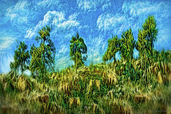 Digital Art - Pine Cliff Winds by Joel Bruce Wallach