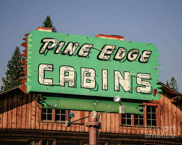 Neon Photograph - Pine Edge Cabins Neon Sign by Edward Fielding