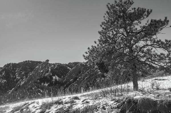 Photograph - Pine Mountain by Dan Urban