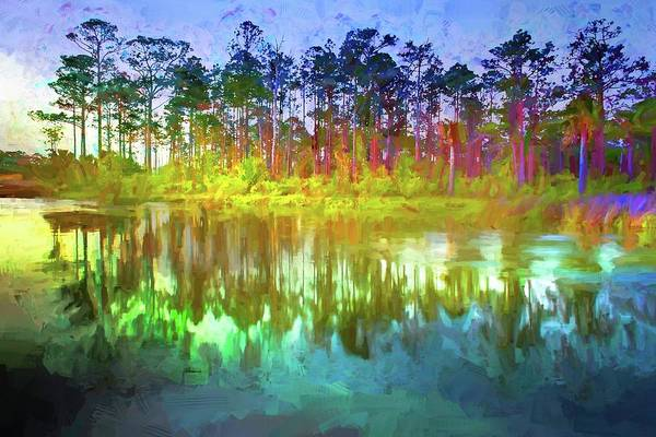 Photograph - Pine Tree Reflections by Alice Gipson