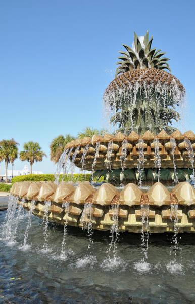 South Carolina Photograph - Pineapple Fountain, Charleston by Rivernorthphotography