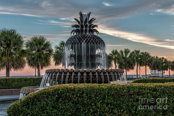 Photograph - Pineapple Fountain Sunset - Charleston Landmark by Dale Powell