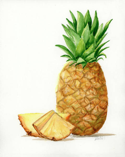 Painting - Pineapple Slices by Darice Machel McGuire