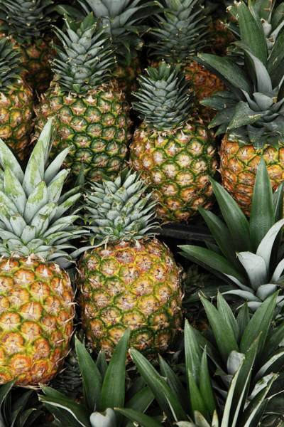 Retail Photograph - Pineapples In Market by Paul Taylor