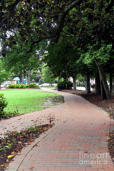 Photograph - Pinehurst Village Walking Path by Amy Dundon