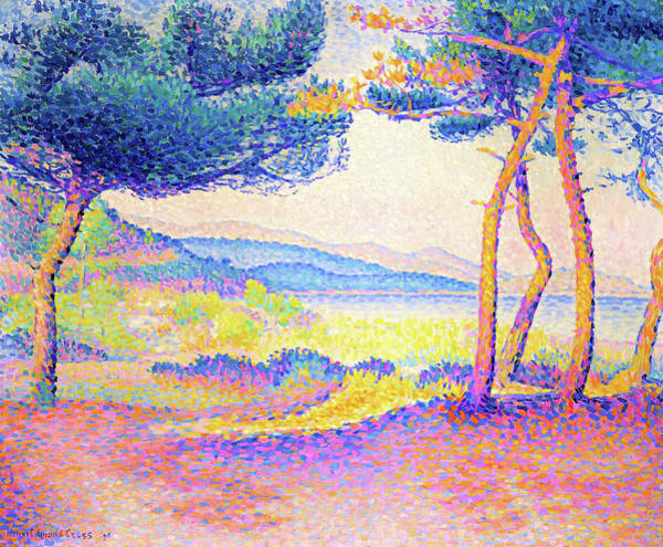 Wall Art - Painting - Pines Along The Shore - Digital Remastered Edition by Henri Edmond Cross