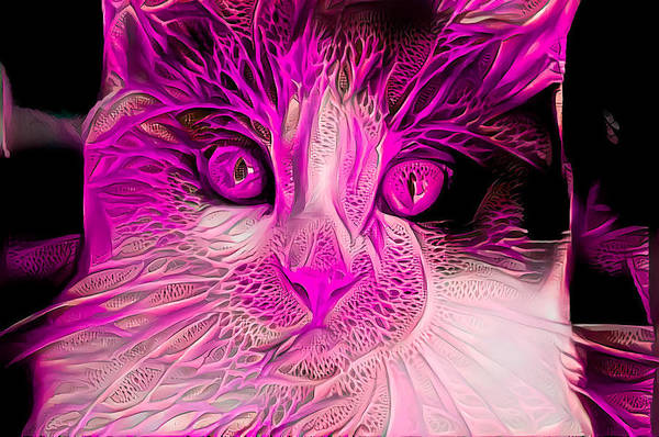 Digital Art - Pink Calico Cat by Don Northup