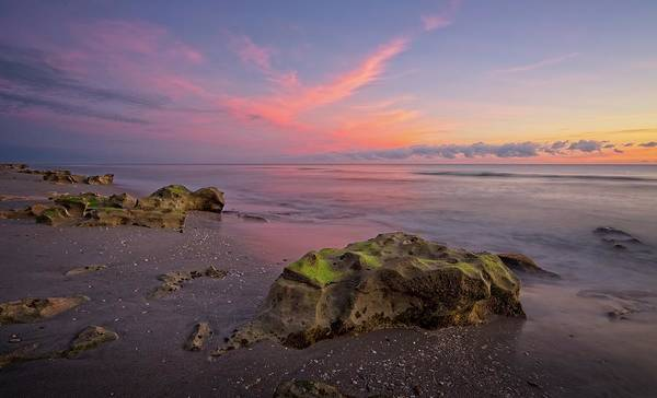 Photograph - Pink Clouds  by Steve DaPonte