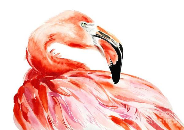 Wall Art - Digital Art - Pink Flamingo Bird Profile Portrait by Antonova Katya