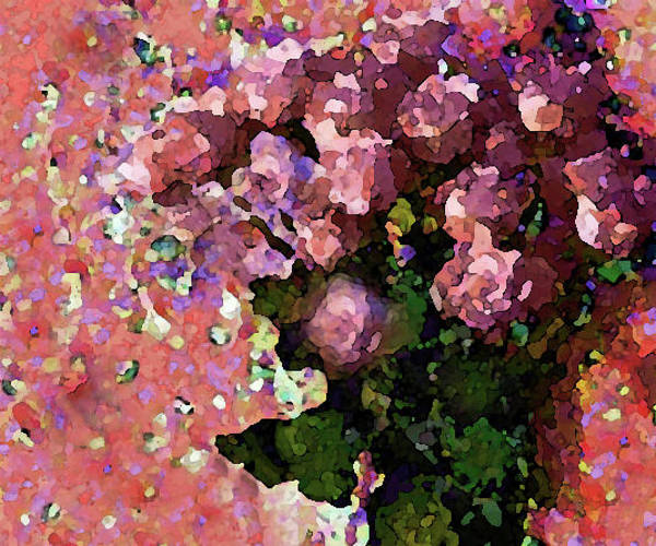 Mixed Media - Pink Floral Fiesta by Corinne Carroll