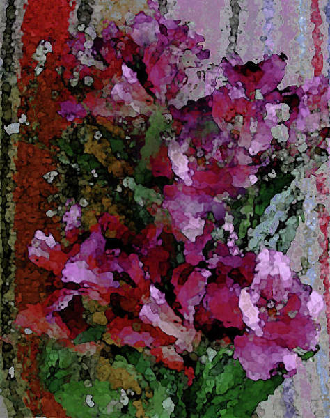Photograph - Pink Flowers Of The C Collection by Corinne Carroll