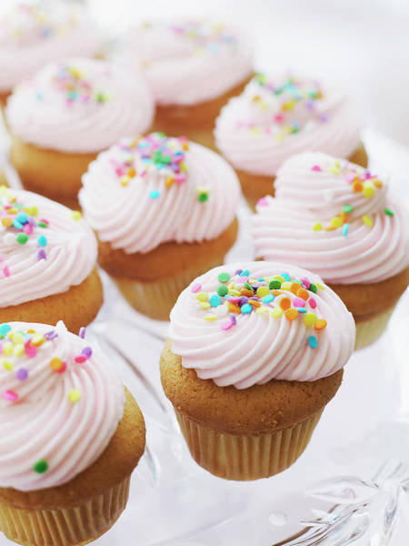 Sprinkles Photograph - Pink Frosted Cupcakes by Alexandra Grablewski