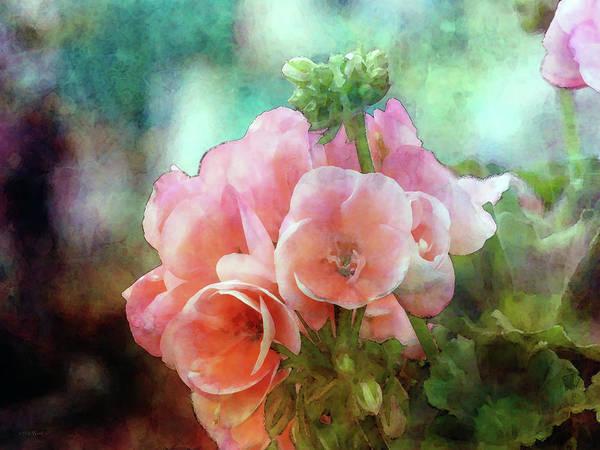Photograph - Pink Geranium 6424 Idp_2 by Steven Ward