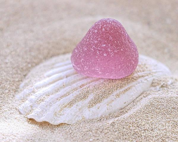 Wall Art - Photograph - Pink Gumdrop Sea Glass by Janice Drew