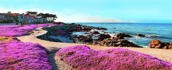 Ocean Grove Photograph - Pink Ice Plants Grace The Shoreline by Elfi Kluck