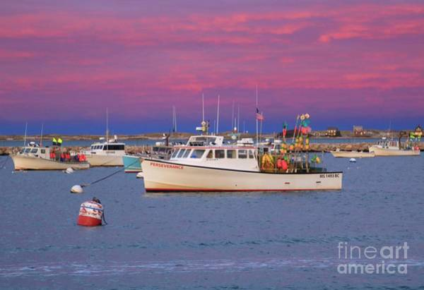 Photograph - Pink In Plymouth by Amazing Jules