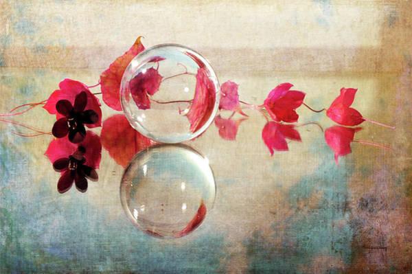 Photograph - Pink Line by Randi Grace Nilsberg