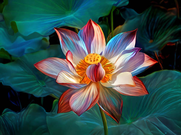 Wall Art - Digital Art - Pink Lotus by Artly Studio