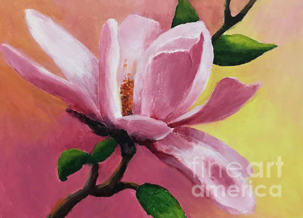 Painting - Pink Magnolia by Linda Anderson