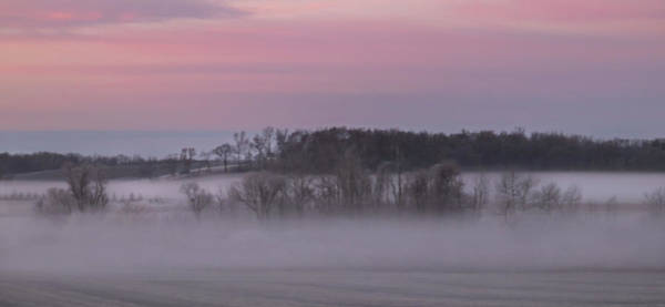 Photograph - Pink Misty Morning #1 - Winter Fog by Patti Deters