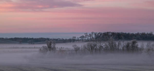 Photograph - Pink Misty Morning #3 - Misty Field by Patti Deters