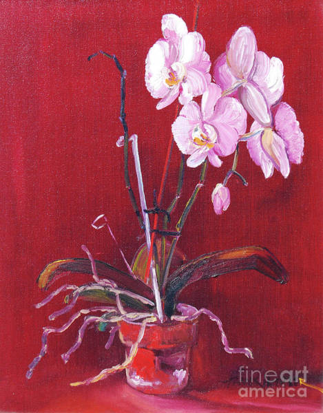 Wall Art - Painting - Pink Orchid by Frank Hoeffler