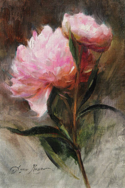 Still-life Painting - Pink Peonies by Anna Rose Bain