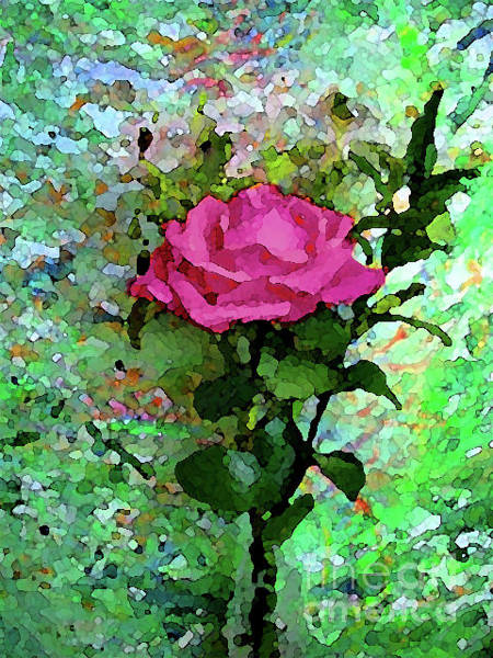 Mixed Media - Pink Rose 1020 by Corinne Carroll