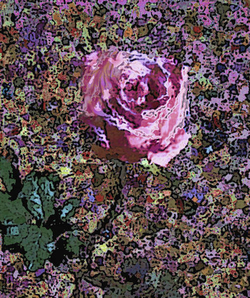 Mixed Media - Pink Rose 1050 by Corinne Carroll