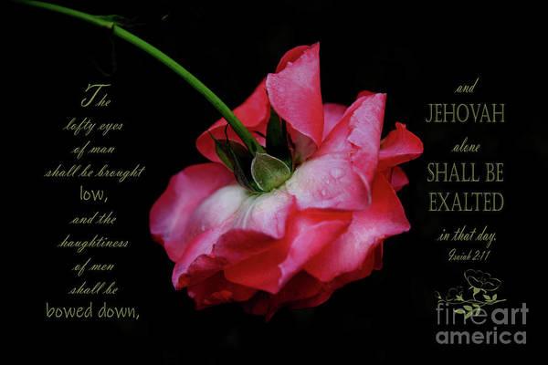 Wall Art - Photograph - Pink Rose Takes A Bow - Verse by Anita Faye