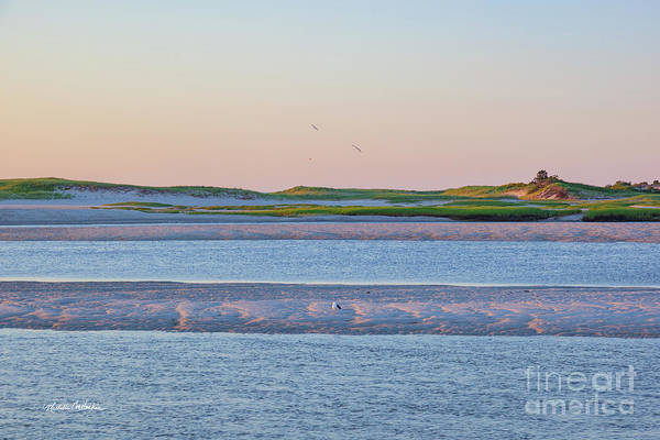 Wall Art - Photograph - Pink Sands by Michelle Constantine