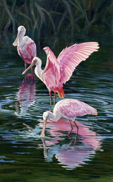Wall Art - Painting - Pink Spoonbills  by Laurie Snow Hein
