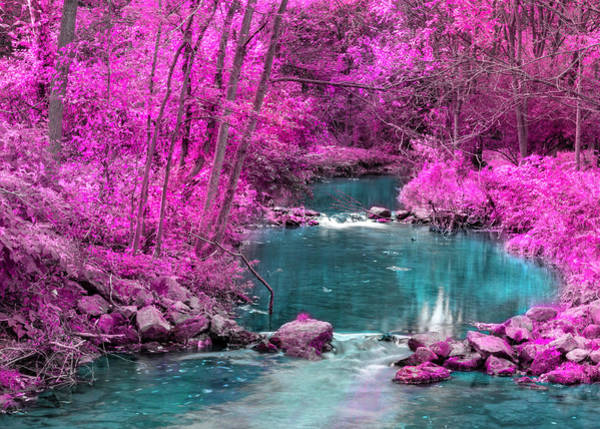 Digital Art - Pink Trees Blue Stream by Jason Fink