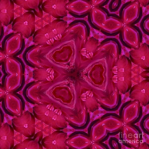 Photograph - Pink Valentine by Susan Rydberg