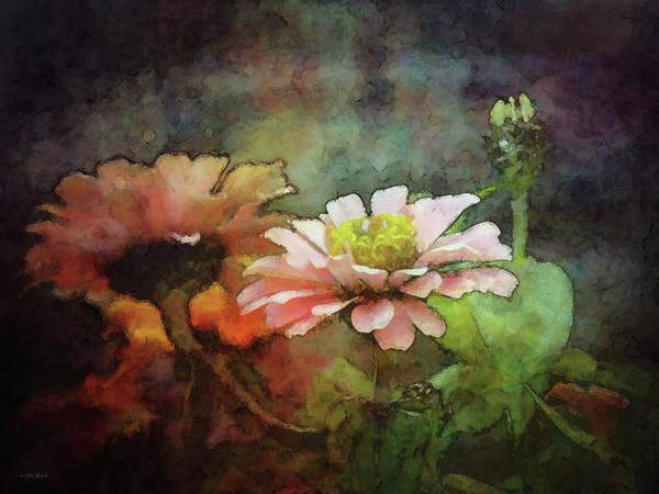 Photograph - Pink Zinnia 1310 Idp_2 by Steven Ward