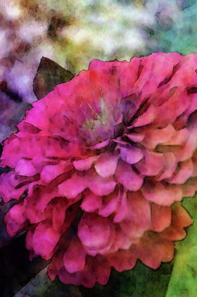 Photograph - Pink Zinnia 7924 Idp_2 by Steven Ward