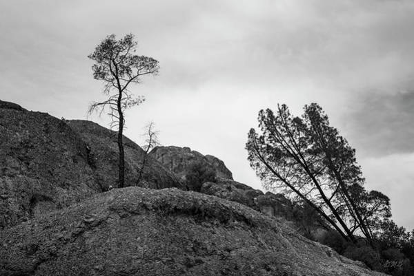 Photograph - Pinnacles Np II Bw by David Gordon