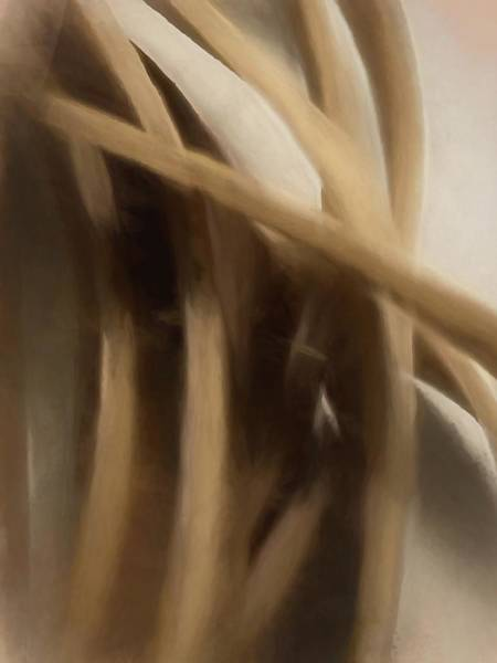 Digital Art - Pins And Needles by Jeff Iverson