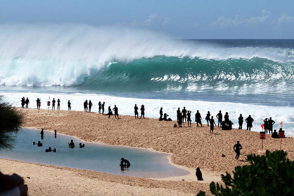 Wall Art - Photograph - Pipeline Frenzy by Sean Davey
